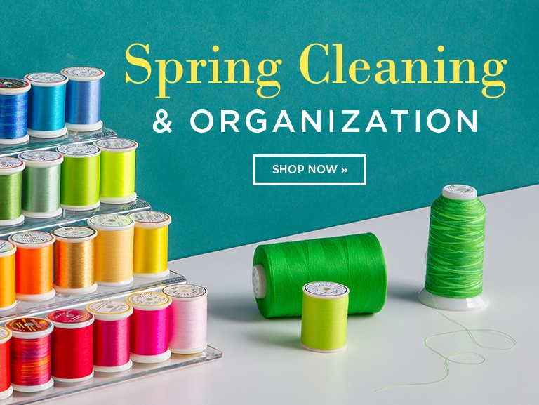 Spring Cleaning and Organization