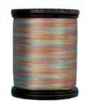 Tiara Variegated Filament Silk Thread #607